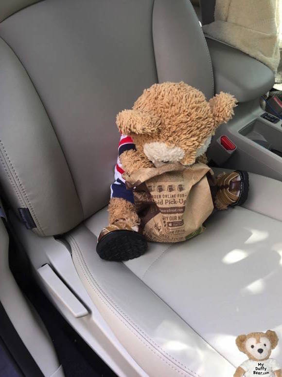 Duffy the Disney Bear sticks his snout into the Panera Bread bag to get out his sweet treat