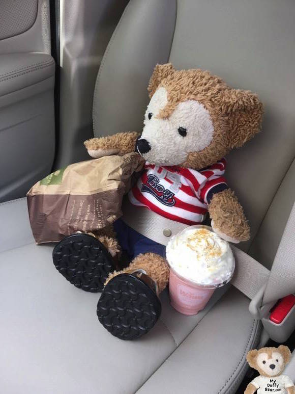 Duffy the Disney Bear holds his Panera sweet treat & WaWa smoothie as they drive home