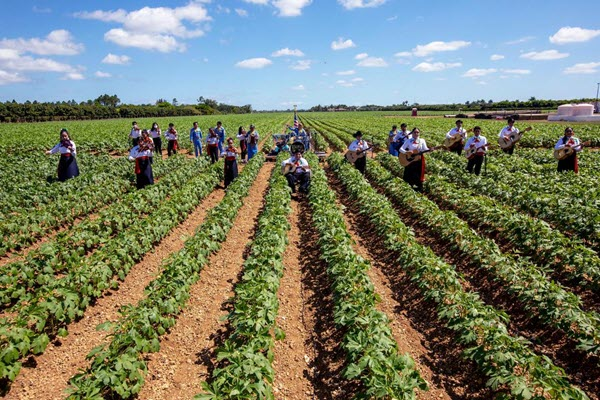 Cinco de Mayo youth performance raises awareness for farmworker families