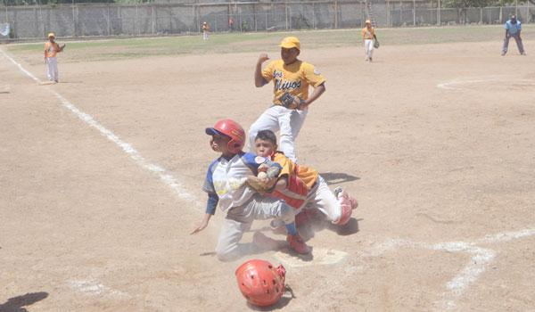 Los Olivos se proclama campeón en la categoría Pre-Infantil del béisbol menor