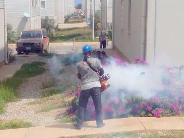 Plan contra chikungunya  y dengue casa por casa
