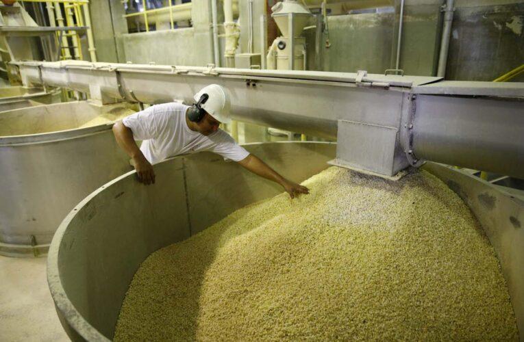 Exoneración de impuestos a importaciones «son una estocada a la producción nacional»