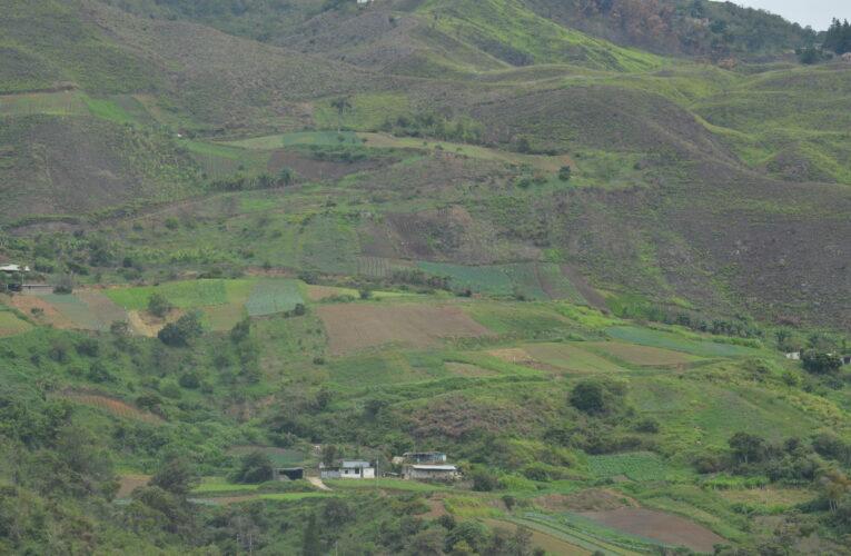 El Gobierno no atiende a los pequeños productores de Carayaca