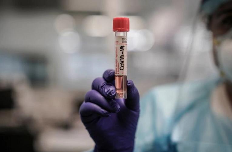 """La OMS advierte que """"se está acelerando la pandemia y no se llegó al pico"""""""