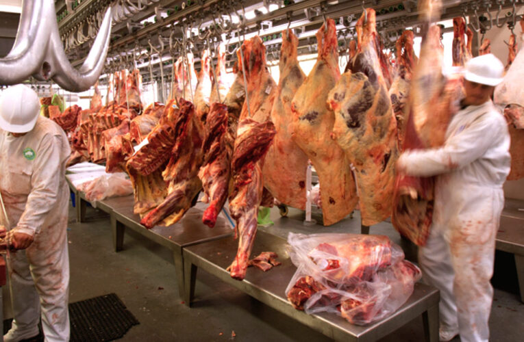 Confagan alerta que disminuyó en 50% la producción de carne