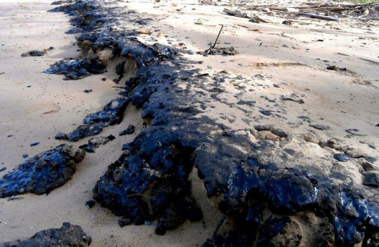 Daños por derrame petrolero en Morrocoy podrían ser irreversibles