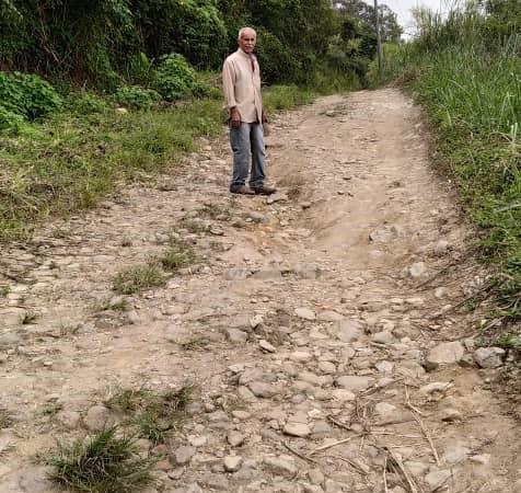 Se dispararán productos agrícolas por escasez de gasolina en Carayaca