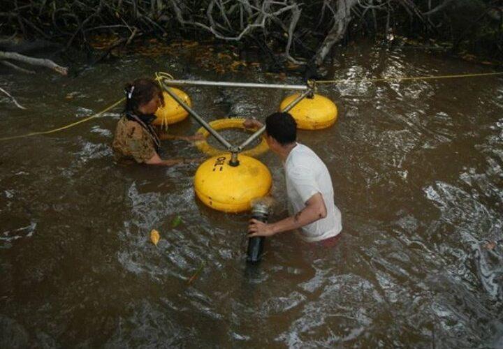 Instalan equipo desnatador en Morrocoy para acelerar limpieza del mangle