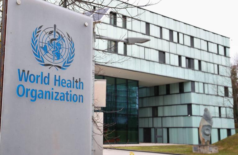 OMS: La seguridad de las vacunas es «lo primero y más importante»