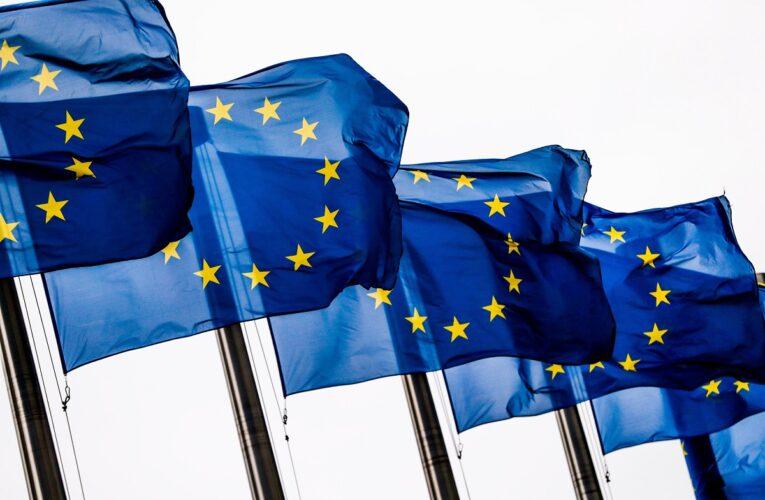 """UE está """"estudiando cuidadosamente"""" invitación a parlamentarias"""