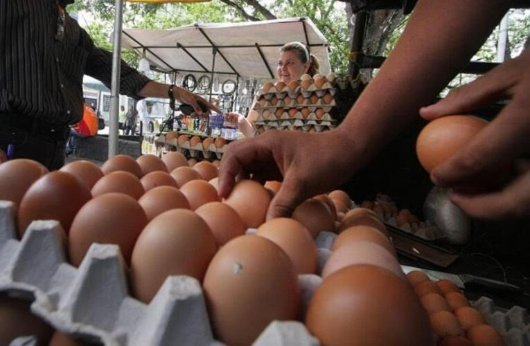 Peligra distribución de huevos por la escasez de gasolina