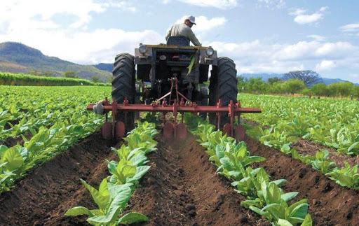 Productores agrícolas denuncian que no tienen gasolina ni diésel