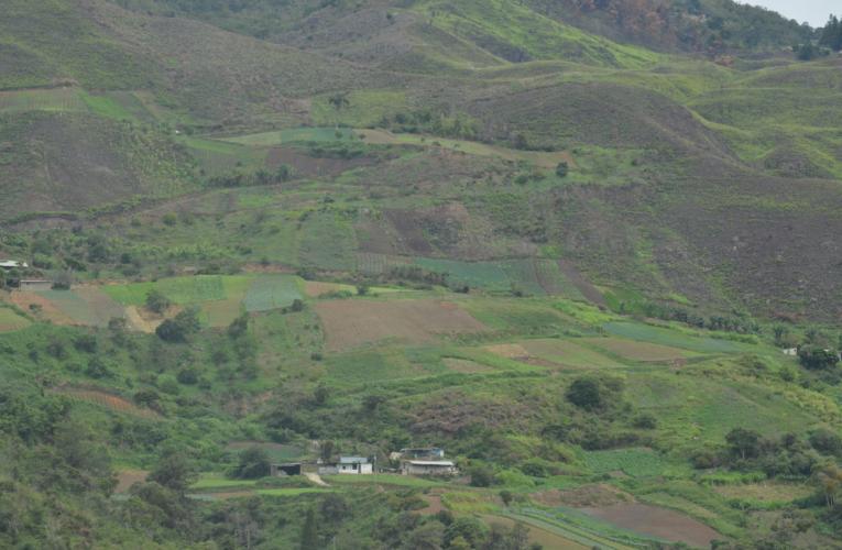 Productores de Carayaca piden plan de asfaltado