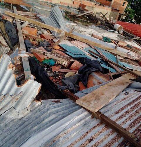 Árbol dejó sin techo a tres familias en Nuevo Mundo