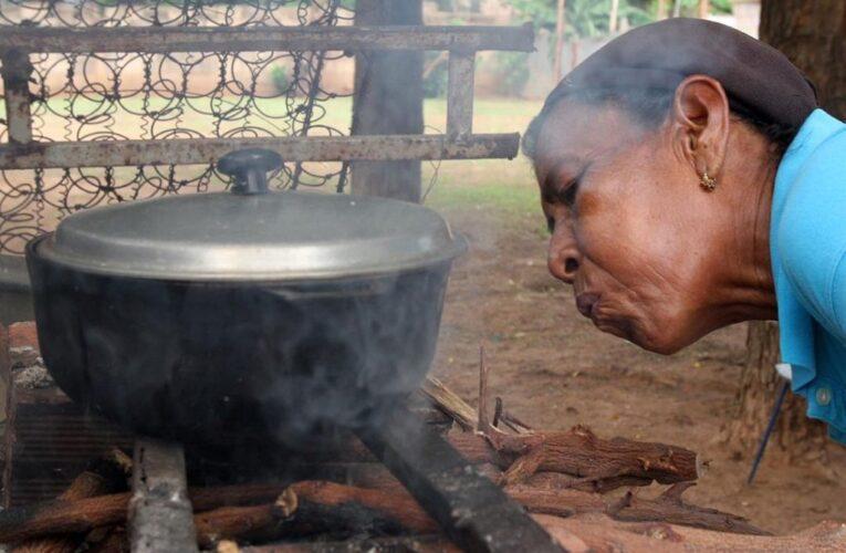 REDI repartirá leña ante escasez de gas
