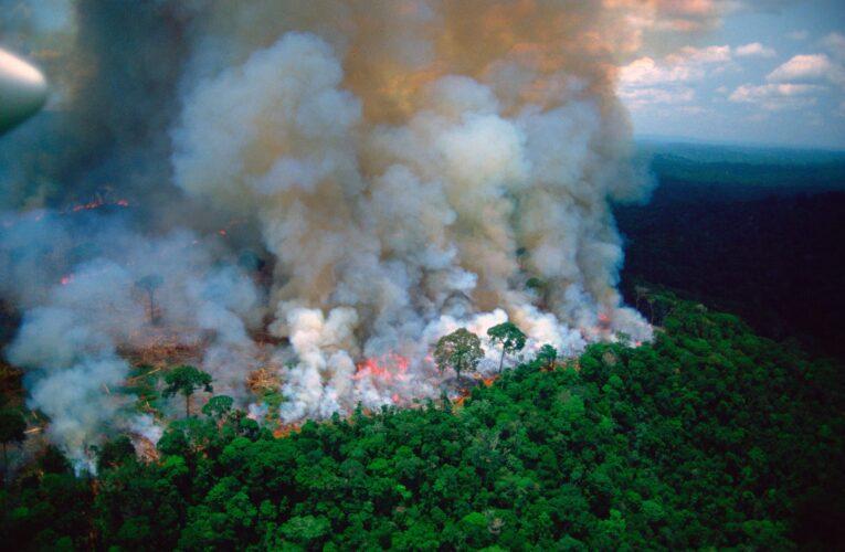 Bolsonaro se compromete ante el G20 a preservar la Amazonía