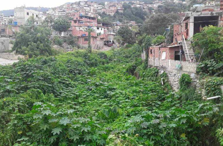 Quebrada de Guanape saturada de maleza y escombros