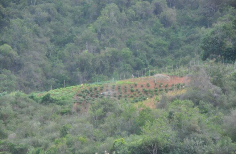 Productores de Los Pozuelos piden que arreglen la carretera
