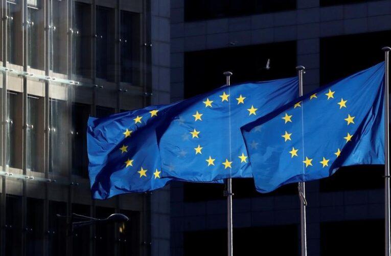 UE aprueba sistema de sanciones contra violadores de DDHH