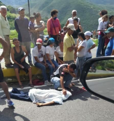 Intentó cruzar la autopista y se lo llevó un carro