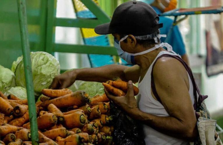 Producción de hortalizas cayó 75%