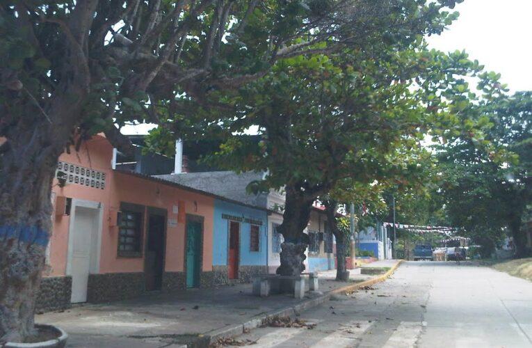 Malandros desmantelan casas en Chuspa