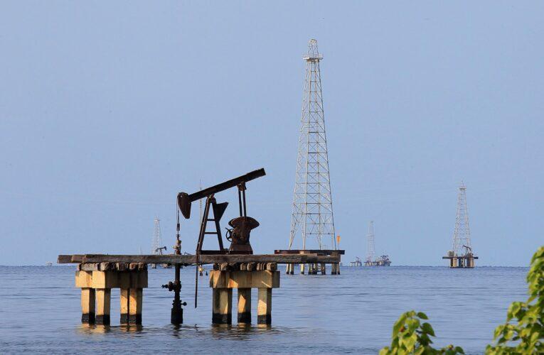 Pdvsa busca empresas privadas operar campos petroleros