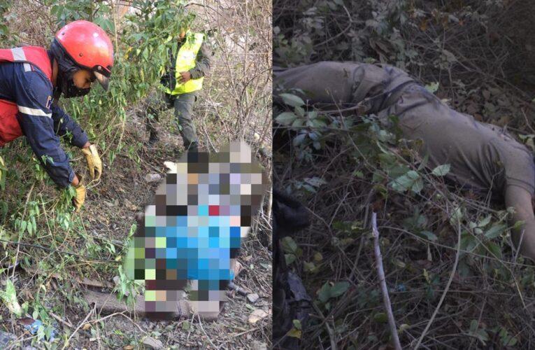 2 muertos al caer gandola con harina Doña Goya por un barranco en la autopista