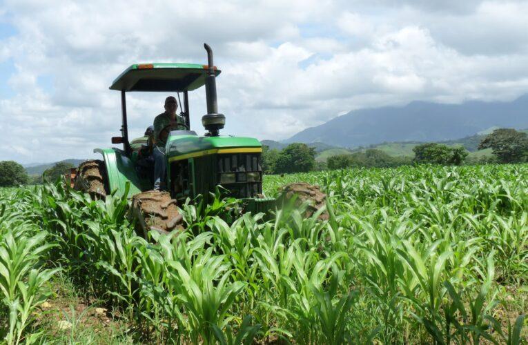 Escasez de gasoil pone en riesgo la producción de alimentos
