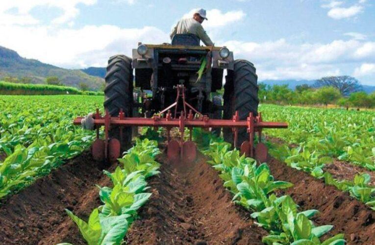 Reservas de gasoil serán para producción de alimentos