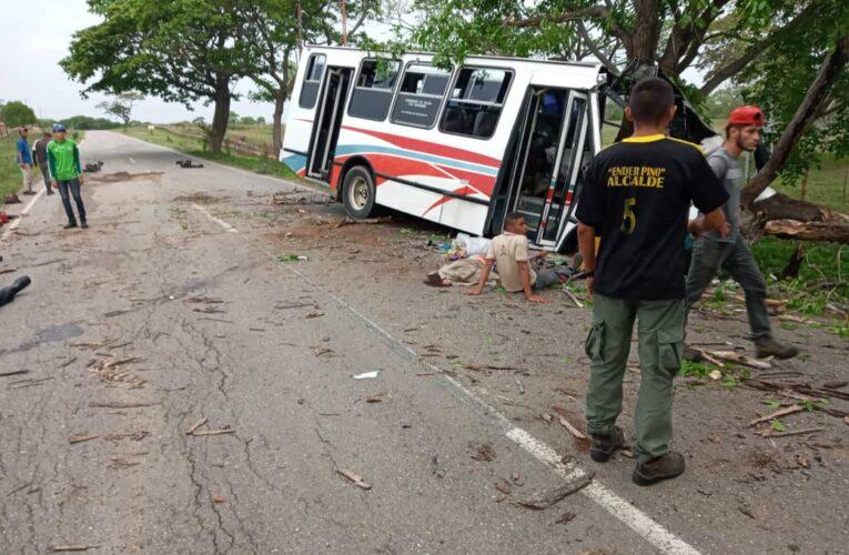 3 muertos y 15 heridos en choque de bus contra un árbol