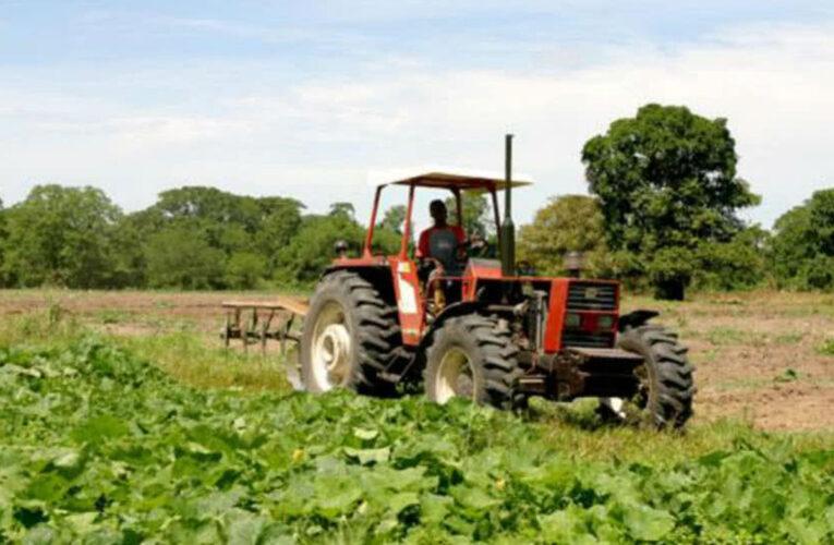 Sector agrícola necesita 700.000 litros de gasoil diarios