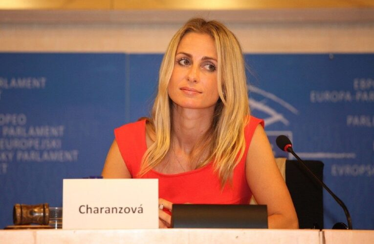 Vicepresidenta del Parlamento Europeo rechaza el nuevo CNE