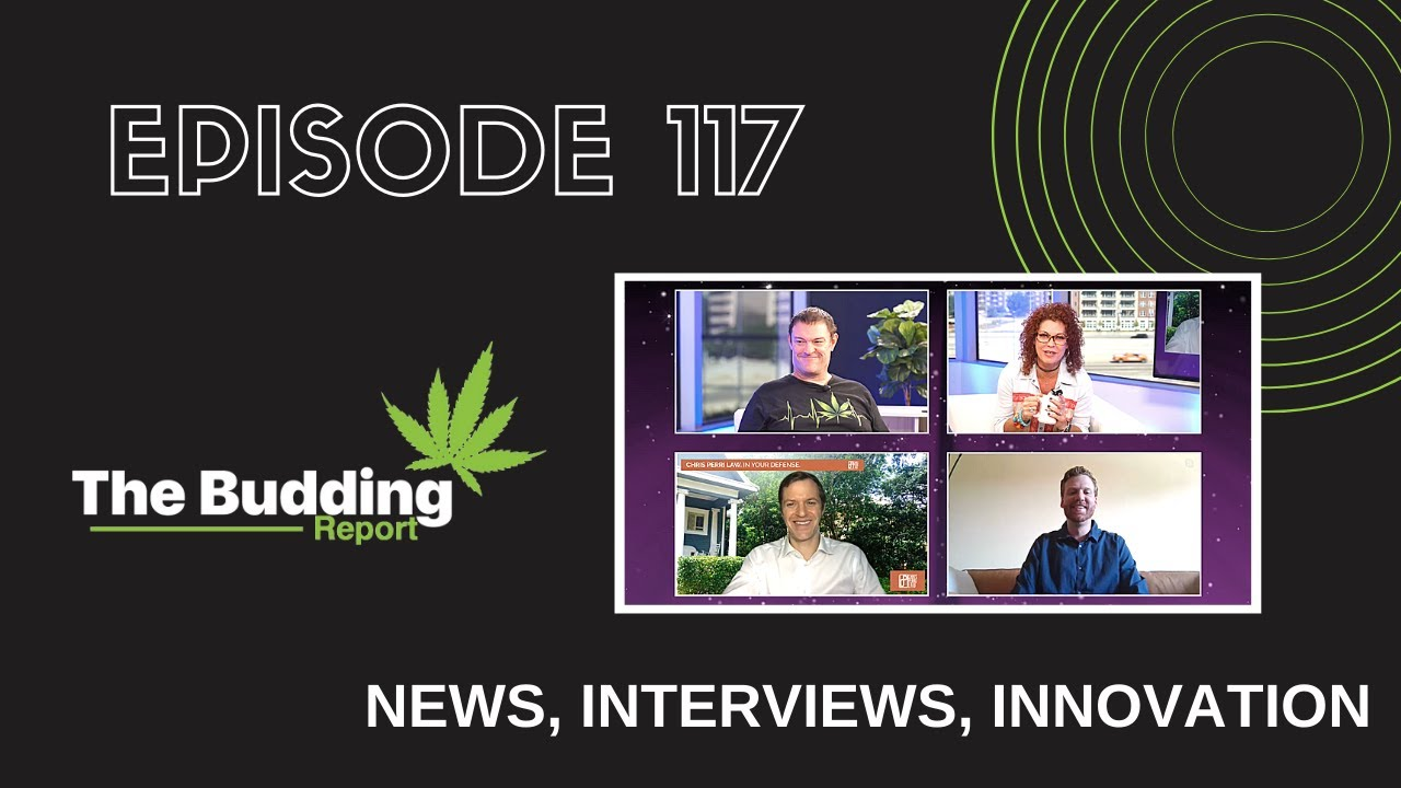TBR117|Consumer Cannabis Buying Patterns Change in Wake of Covid-19|Matthew Abel & Mike Hennesy - youtube