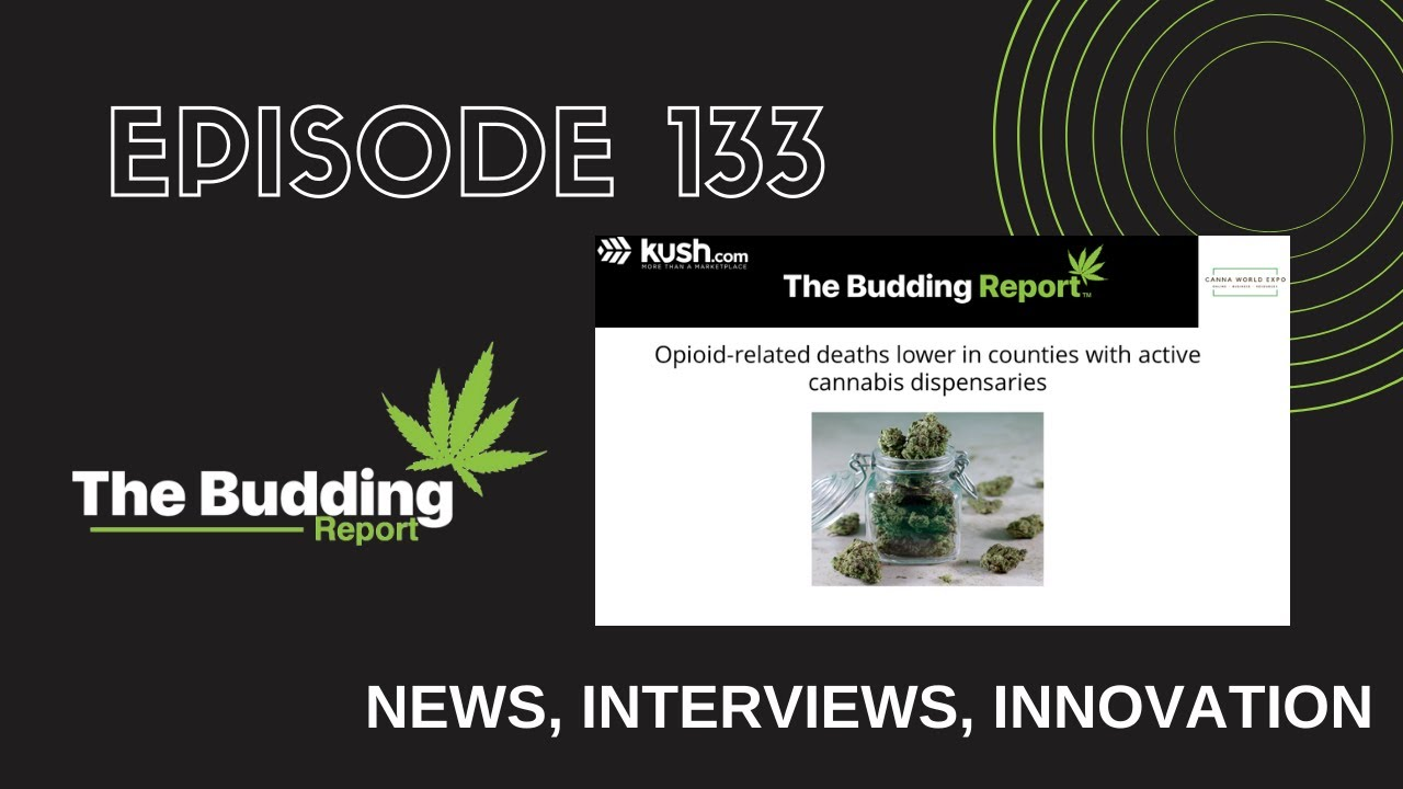 TBR 133   Opioid Deaths Lower in Counties with Dispensaries   Leslie Bocskor & Dr. Rob Streisfeld - youtube