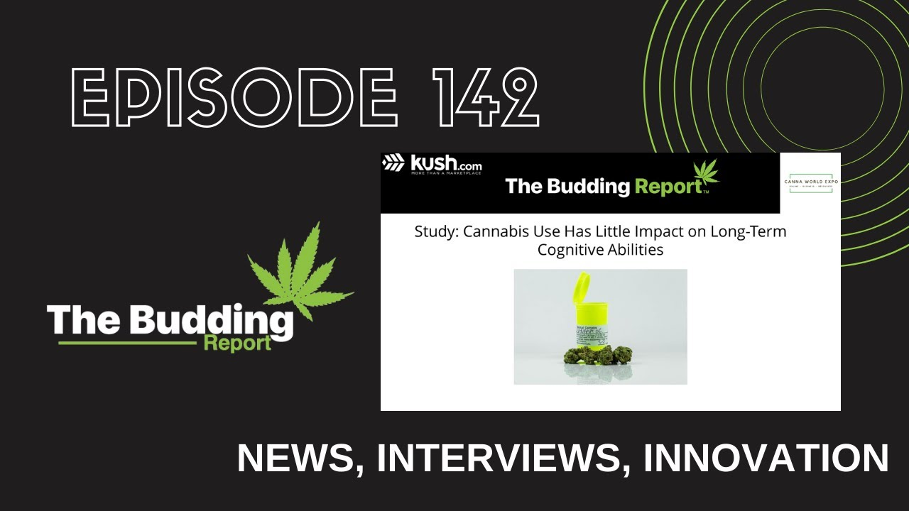 142 | Cannabis Has Little Impact on Long-Term Cognitive Abilities | Dr. Ted Emanuel & Charles Vest - youtube