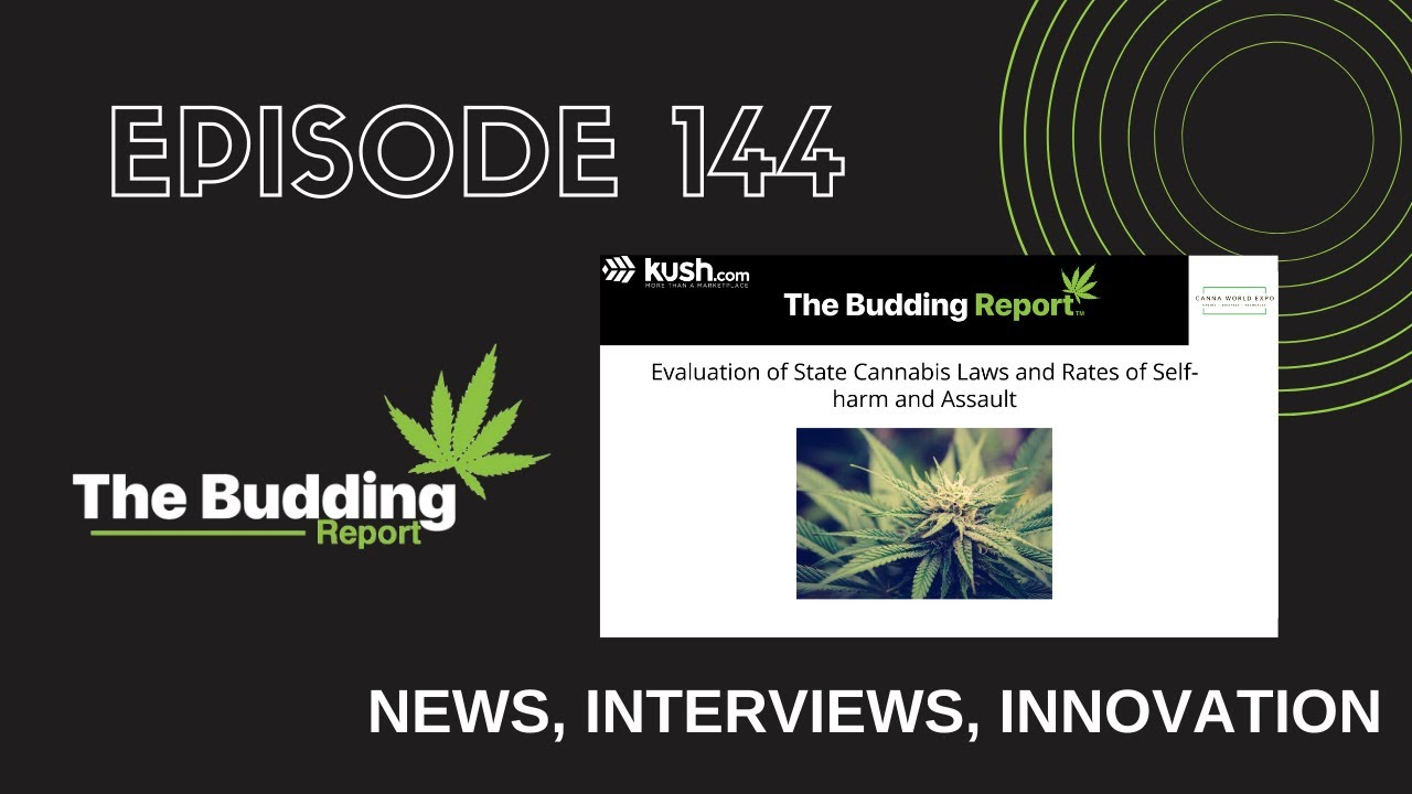TBR 144 | Cannabis Laws and Rates of Self-Harm | Gina Dubbe & Dr. Leslie Apgar, Daniel Betts - youtube