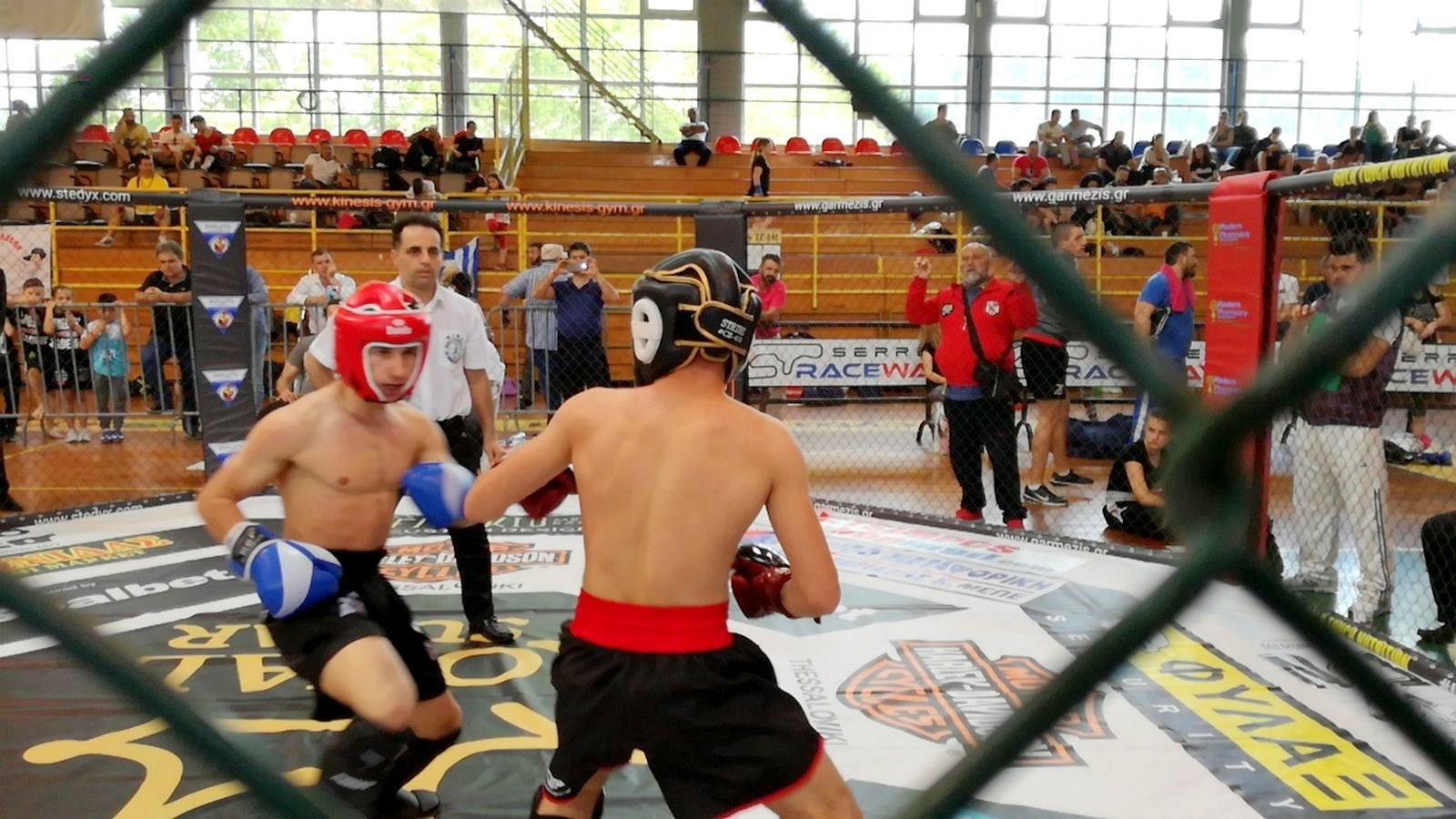 ЗА НЕД ДО со 14 медали за Македонија од Светскиот куп во боречки вештини во Грција