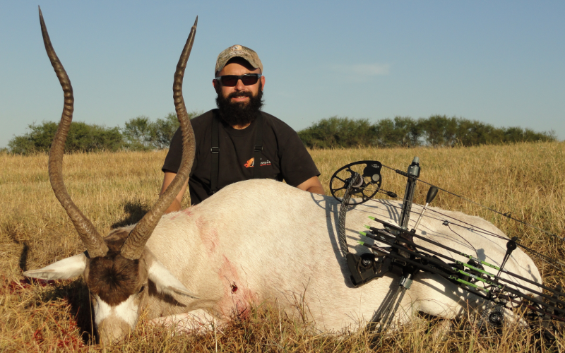 Addax Exotic Hunt in Texas