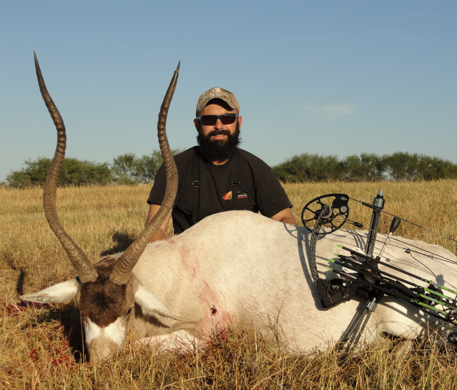 Trophy Addax Hunting in Texas
