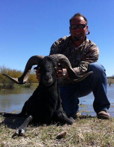 Black Hawaiian Sheep Hunt