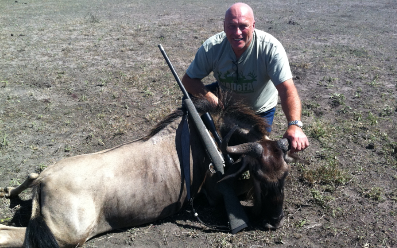 Blue Wildebeest Exotic Hunt in Texas