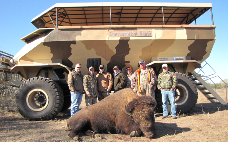 Buffalo Exotic Hunt in Texas