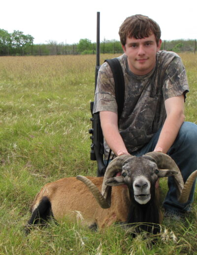 Corsican Sheep Hunt