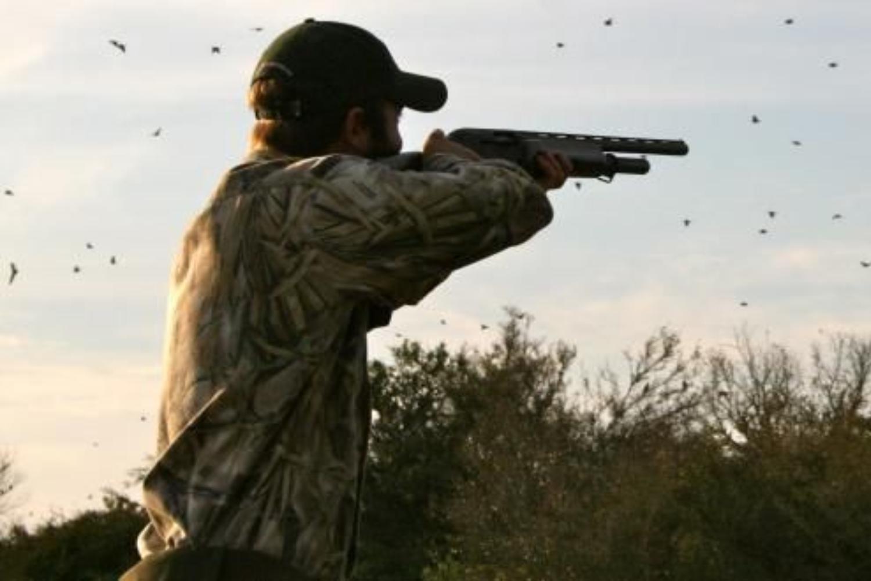 Dove Hunts Texas