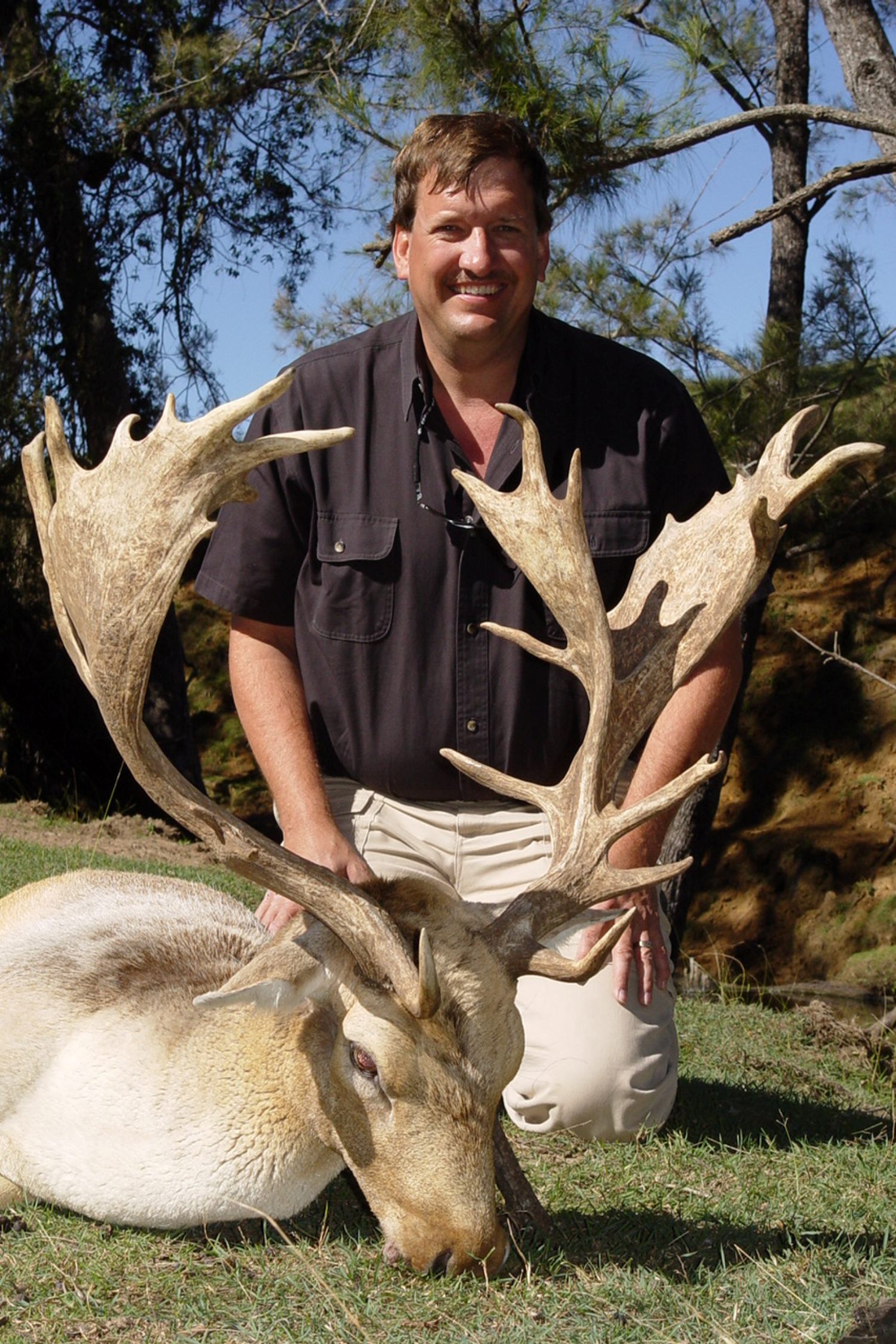 Fallow Deer Hunting in Texas