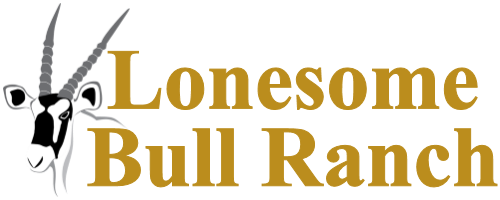 Lonesome Bull Ranch