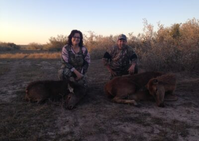 Texas Exotic Meat Hunt
