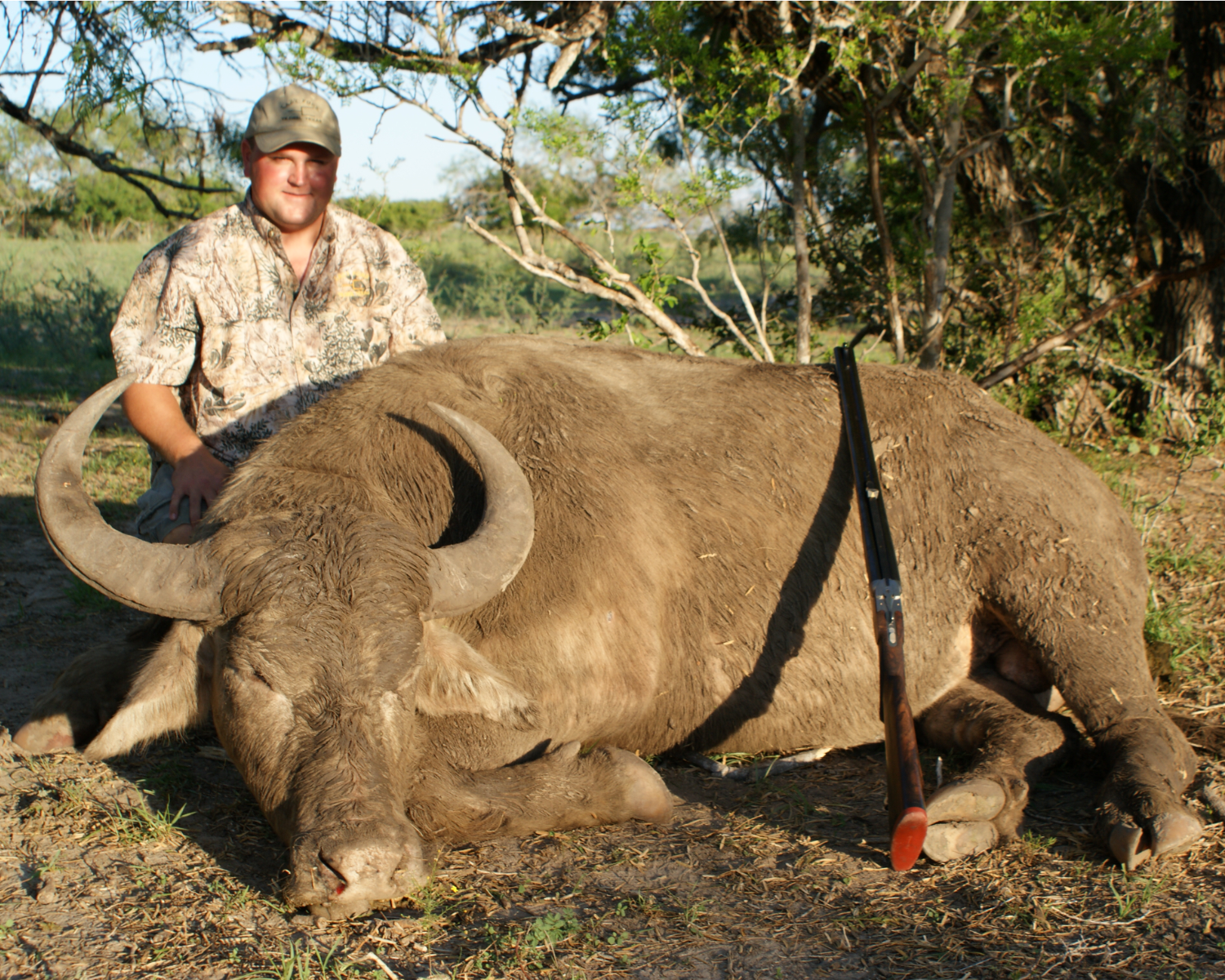 Trophy Water Buffalo Hunting