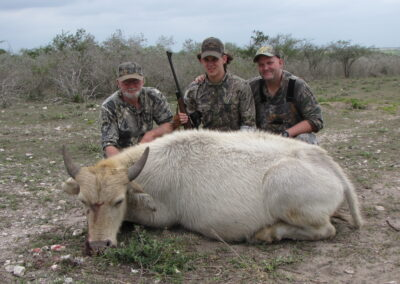 White Buffalo Meat Hunt